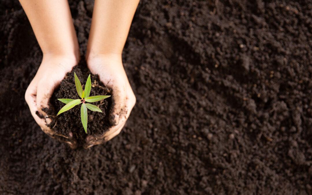 L'Agricoltura protagonista contro il consumo di suolo